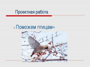 Проектная работа « Поможем птицам»