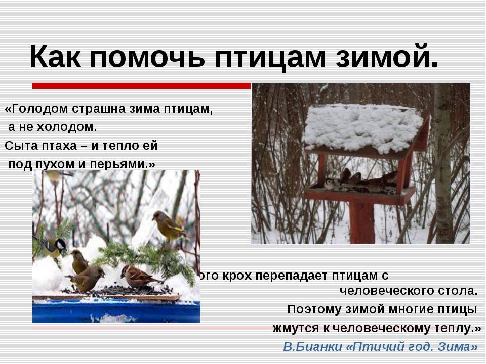 туда вставляется картинка как помочь птицам зимой принципе действия чугунного
