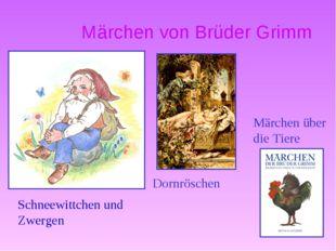 Märchen von Brüder Grimm Dornröschen Schneewittchen und Zwergen Märchen über