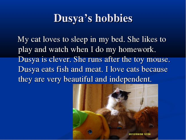 Dusya's hobbies My cat loves to sleep in my bed. She likes to play and watch...