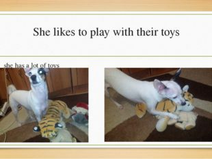 She likes to play with their toys she has a lot of toys her favorite is the t