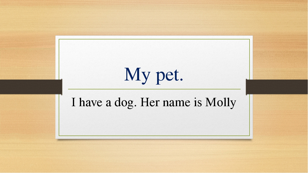 My pet. I have a dog. Her name is Molly