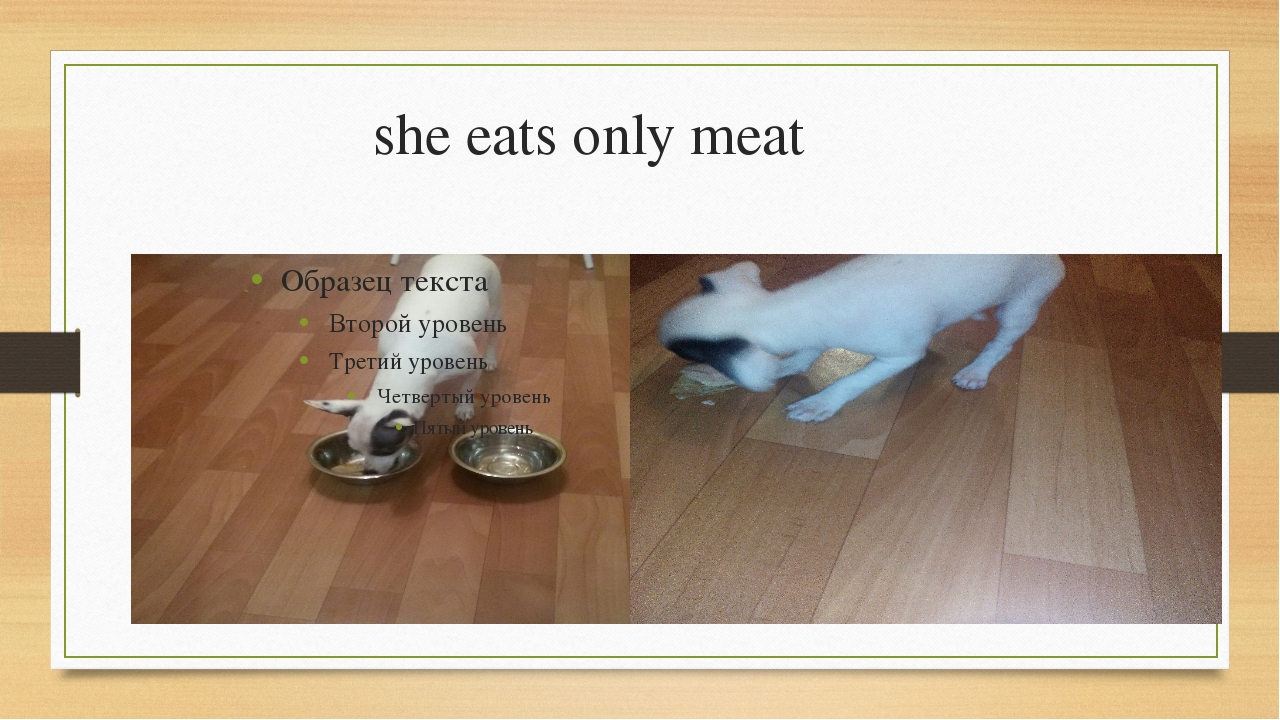 she eats only meat
