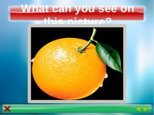 What can you see on this picture?