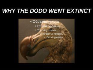WHY THE DODO WENT EXTINCT