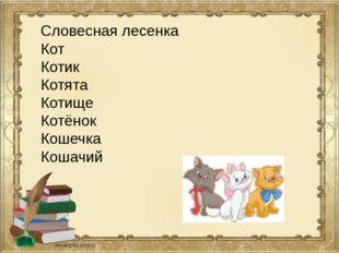 Словесная лесенка Кот Котик Котята Котище Котёнок Кошечка Кошачий