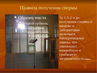 Правила получения спермы За 1,5-2 ч до получения спермы в манеже и лаборатори