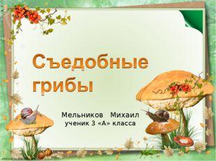 Мельников Михаил ученик 3 «А» класса