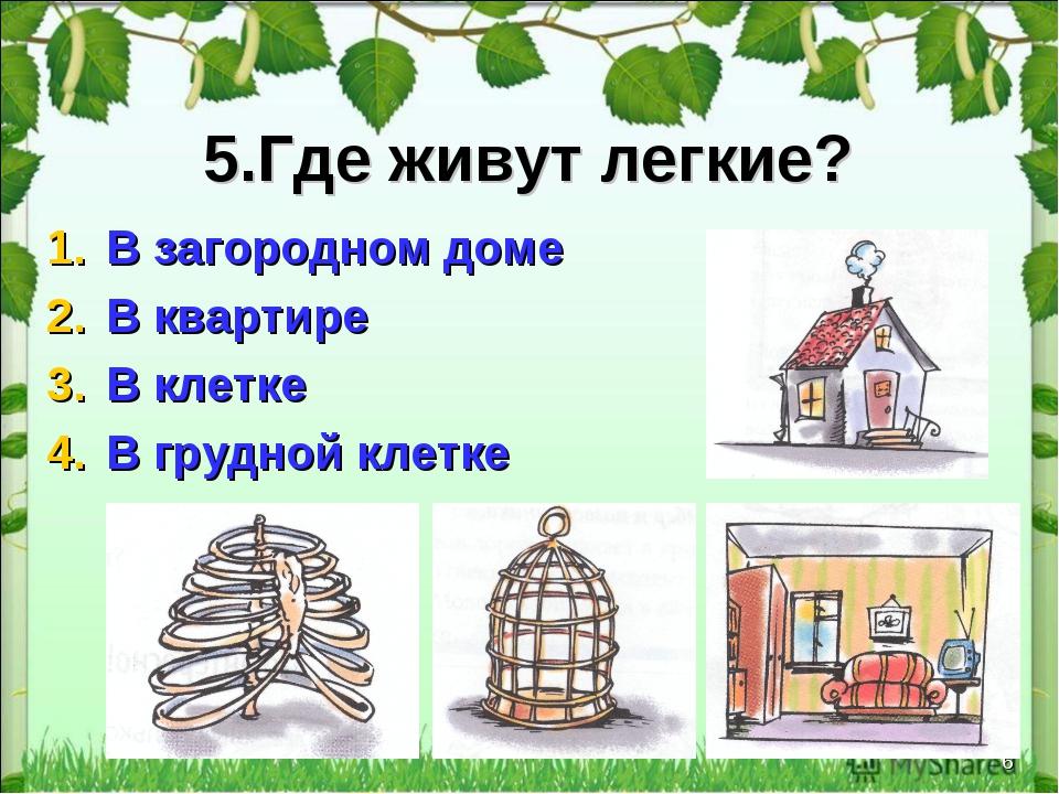 * 5.Где живут легкие? В загородном доме В квартире В клетке В грудной клетке