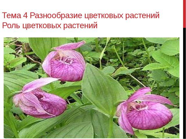 Тема 4 Разнообразие цветковых растений Роль цветковых растений