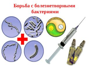 Борьба с болезнетворными бактериями Соблюдение правил личной гигиены Прививки