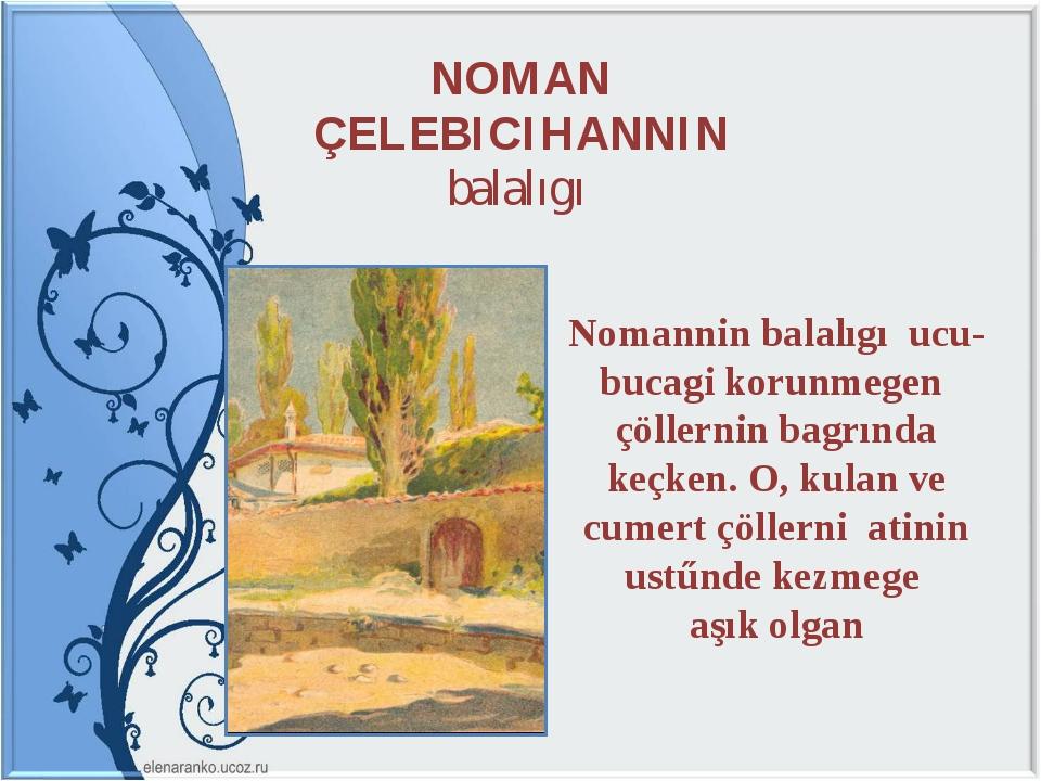 NOMAN ÇELEBICIHANNIN balalıgı Nomannin balalıgı ucu-bucagi korunmegen çöller...