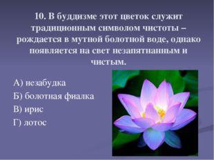 10. В буддизме этот цветок служит традиционным символом чистоты – рождается в