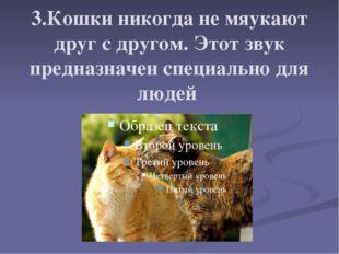 3.Кошки никогда не мяукают друг с другом. Этот звук предназначен специально д