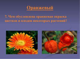Оранжевый 7. Чем обусловлена оранжевая окраска цветков и плодов некоторых рас