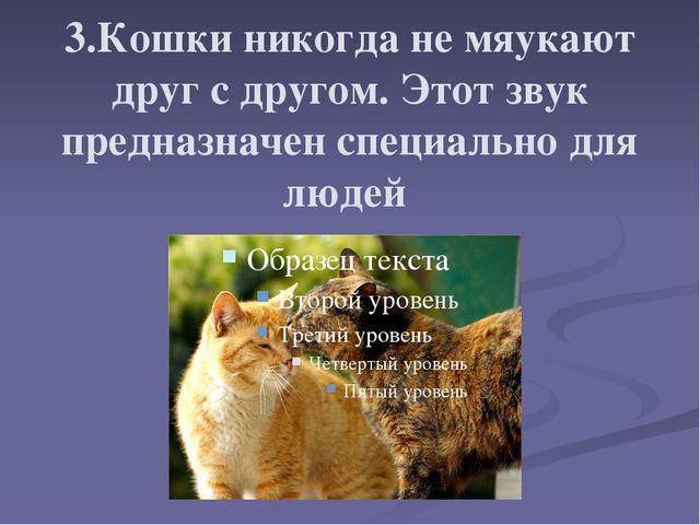 3.Кошки никогда не мяукают друг с другом. Этот звук предназначен специально д...