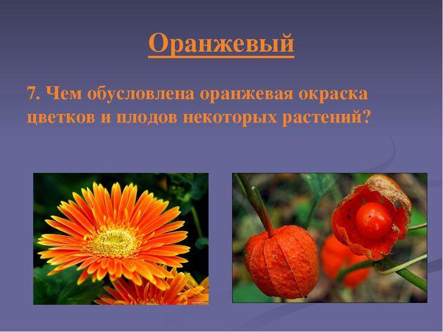 Оранжевый 7. Чем обусловлена оранжевая окраска цветков и плодов некоторых рас...