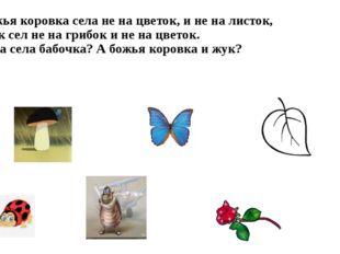 Божья коровка села не на цветок, и не на листок, жук сел не на грибок и не на