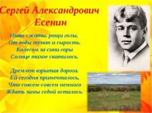Сергей Александрович Есенин Нивы сжаты, рощи голы, От воды туман и сырость.