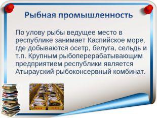 По улову рыбы ведущее место в республике занимает Каспийское море, где добыв