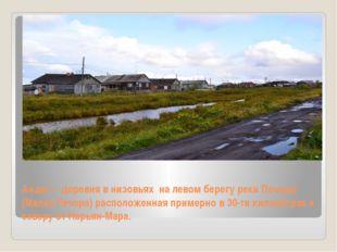 Андег – деревня в низовьях на левом берегу реки Печоры (Малая Печора) располо