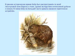 В раннее историческое время бобр был распространён по всей лесолуговой зоне Е