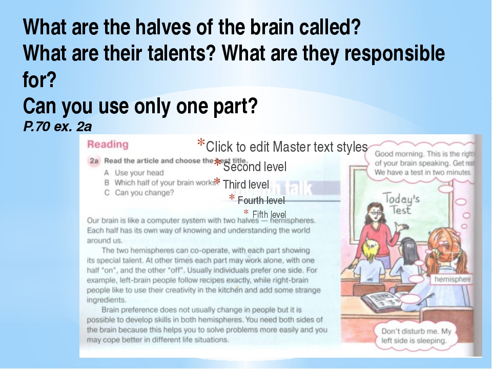 What are the halves of the brain called? What are their talents? What are the...