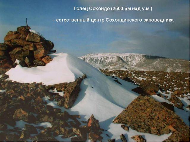 Голец Сохондо (2500,5м над у.м.) – естественный центр Сохондинского заповедника