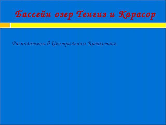 Бассейн озер Тенгиз и Карасор Расположены в Центральном Казахстане.