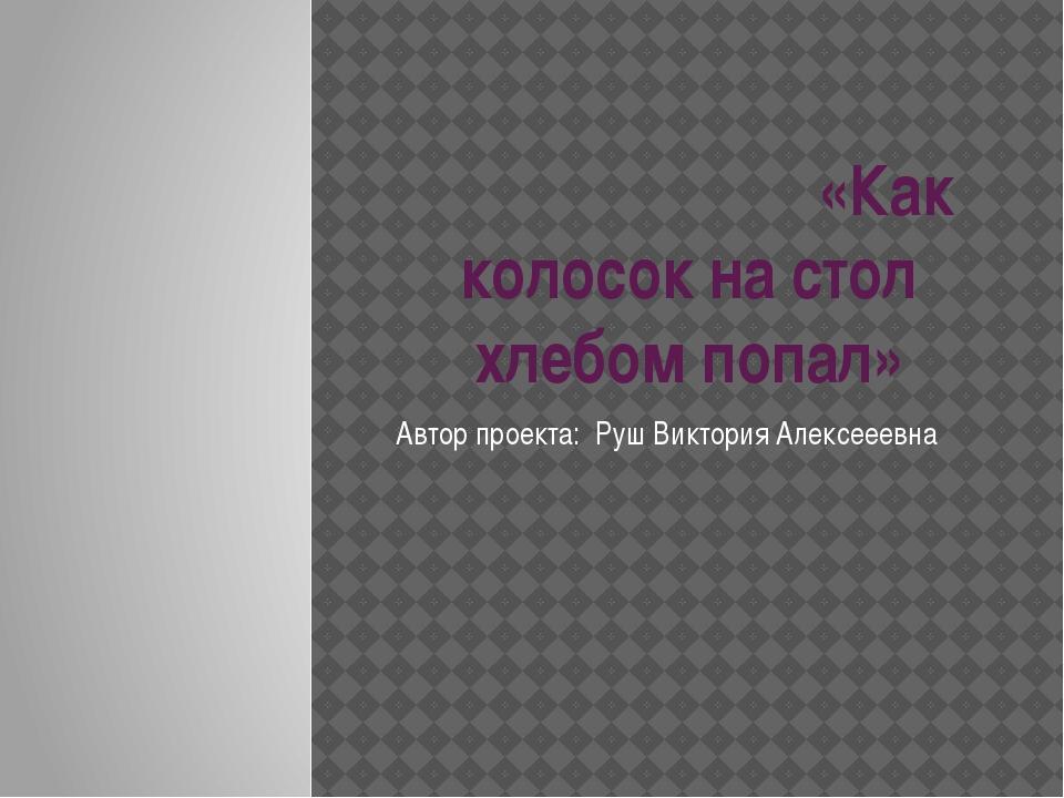 «Как колосок на стол хлебом попал» Автор проекта: Руш Виктория Алексееевна