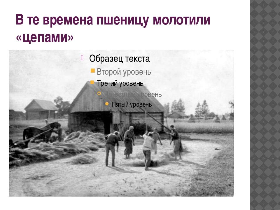 В те времена пшеницу молотили «цепами»