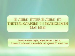 БҰЛШЫҚ ЕТТЕР, БҰЛШЫҚ ЕТ ТИПТЕРІ, ОЛАРДЫҢ ҚҰРЫЛЫСЫ МЕН МАҢЫЗЫ Адамға пішін бе