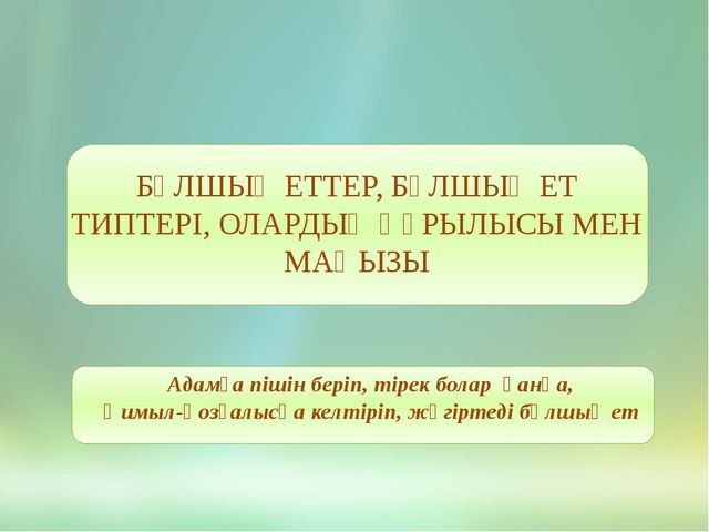 БҰЛШЫҚ ЕТТЕР, БҰЛШЫҚ ЕТ ТИПТЕРІ, ОЛАРДЫҢ ҚҰРЫЛЫСЫ МЕН МАҢЫЗЫ Адамға пішін бе...