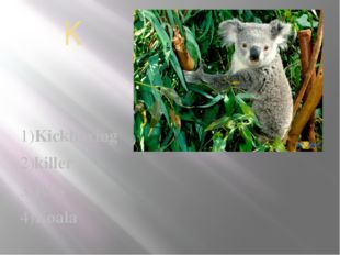 K 1)Kickboxing 2)killer 3)Kiss 4)Koala