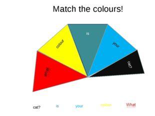 Match the colours! colour is your cat? colour is your cat? cat?