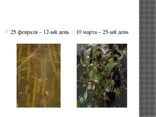 25 февраля – 12-ый день 10 марта – 25-ый день