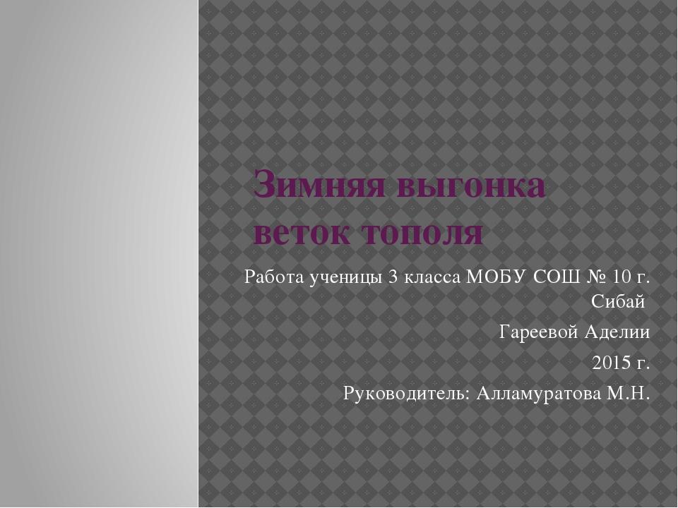 Зимняя выгонка веток тополя Работа ученицы 3 класса МОБУ СОШ № 10 г. Сибай Га...