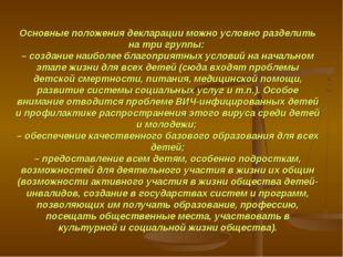 Основные положения декларации можно условно разделить на три группы: – создан