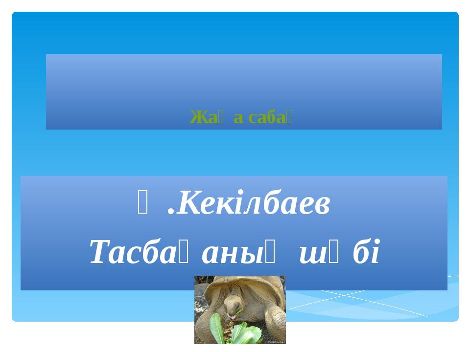 Жаңа сабақ Ә.Кекілбаев Тасбақаның шөбі
