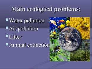 Main ecological problems: Water pollution Air pollution Litter Animal extinct