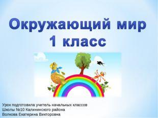 Урок подготовила учитель начальных классов Школы №10 Калининского района Волк
