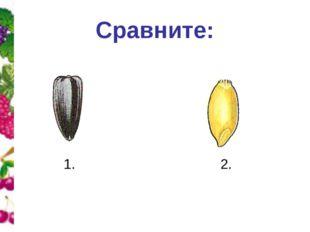 Сравните: 1. 2.