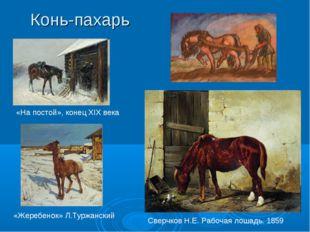 Конь-пахарь «На постой», конец XIX века «Жеребенок» Л.Туржанский Сверчков Н.Е