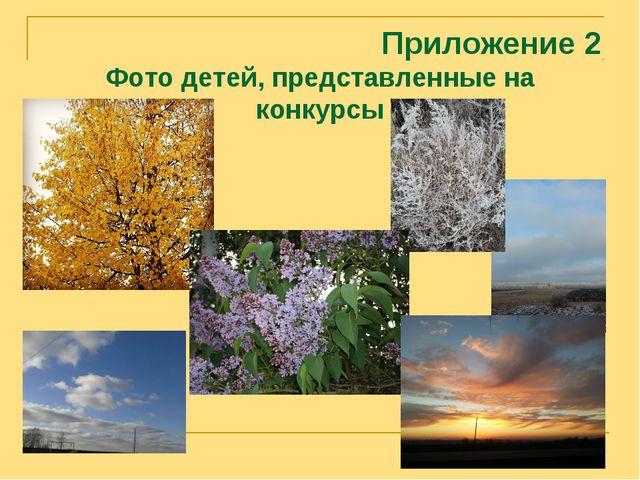 Приложение 2 Фото детей, представленные на конкурсы