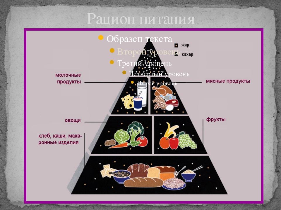 Основы Рационального Питания О Похудения. Основы правильного питания для похудения: меню, рекомендации диетолога и отзывы