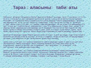 Тараз қаласының табиғаты Облыстың айтарлықтай аумағын Бетпақ-Дала және Мойынқ