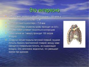 Это интересно 300–350 млн. альвеол с общей площадью – 100 кв.м, а площадь пов