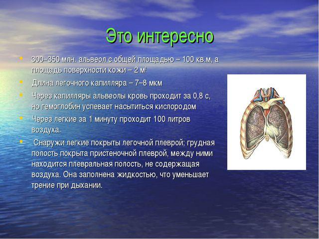 Это интересно 300–350 млн. альвеол с общей площадью – 100 кв.м, а площадь пов...