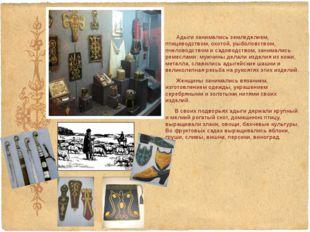 Адыги занимались земледелием, птицеводством, охотой, рыболовством, пчеловодс