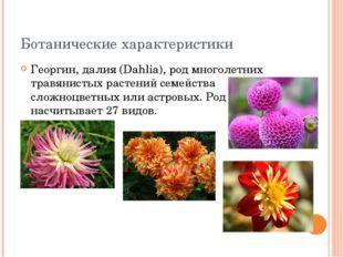 Ботанические характеристики Георгин, далия (Dahlia), род многолетних травянис